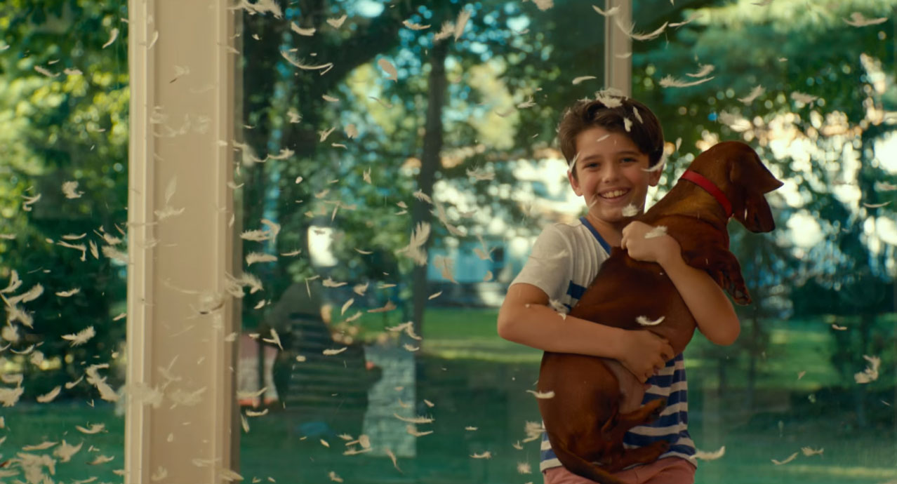 Harvinainen onnellinen hetki Wiener-Dogissa (2016)